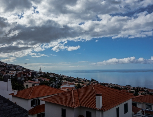 Madeira Tag 1 – Anreise & Wandern in Funchal