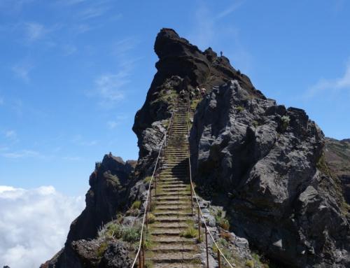 Madeira Tag 2 – Hochstapler beim MIUT